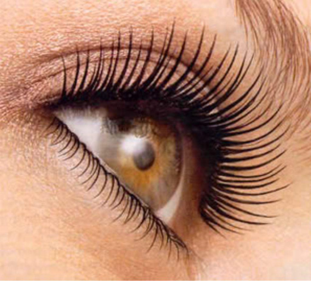 Eyelash Hair Transplant In Dubai Uae Hair Transplant Dubai Clinic