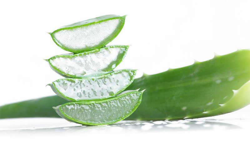 Aloe Vera to Treat Hair Loss