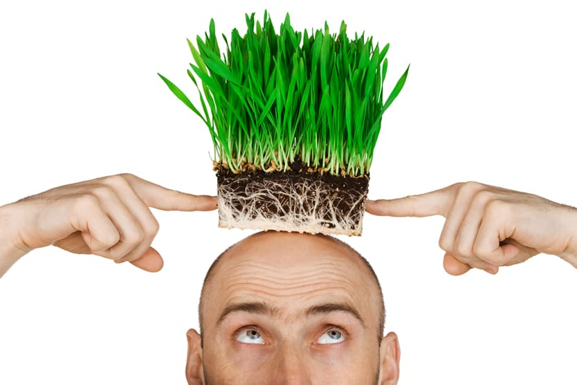 Baldness (1)